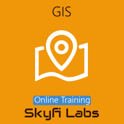 GIS (Geographic Information System) - Online Project-based Course
