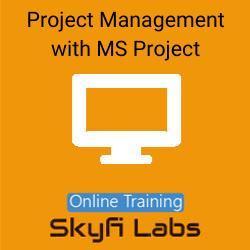 Project Management with Primavera Online Live Course